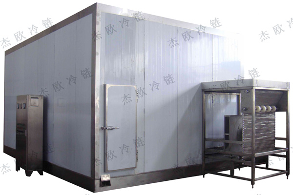 Fluidization IQF Freezer